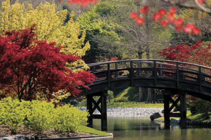 The Botanical Garden Has It All This Fall