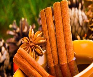 The Scientific Benefits of Cinnamon