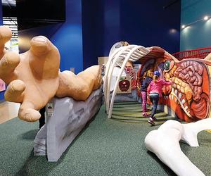 Healthworks Kids Museum St. Louis